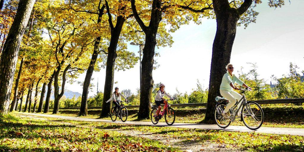Fahrrad Herbst_kleiner Ausschnitt
