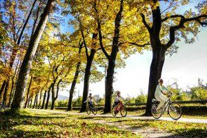 Fahrrad Herbst_neu